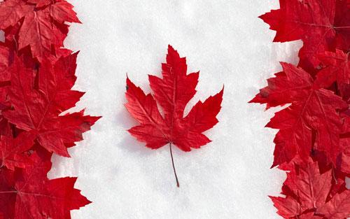 Cryptoff.net: Канада планирует ужесточить регулирование Bitcoin